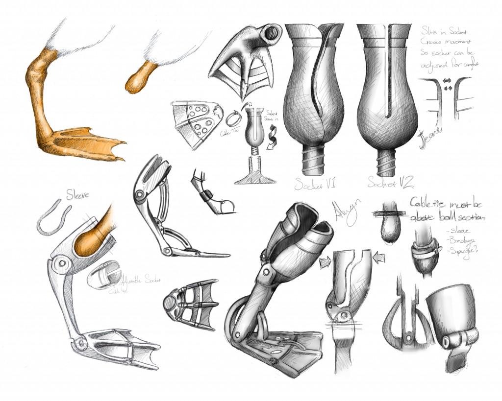 Goose Foot Concepts 2
